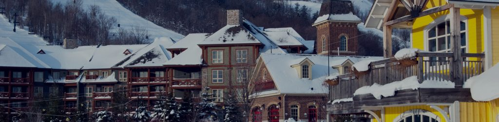 Snow Covered Rooftops in Collingwood Ontario